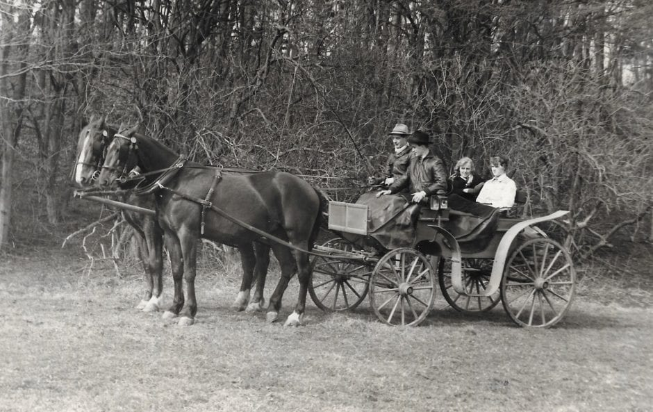 Vagn från Borrby gård (1)