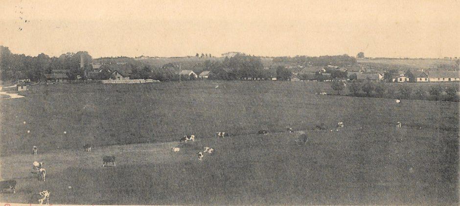 Borrby från söder 1902. Fr Hagman (2)